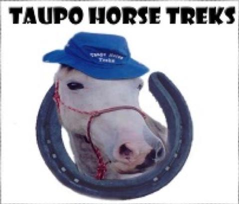 Taupo horse treks