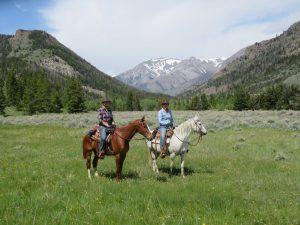 Paarden vakanties